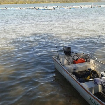 Fishing-nambucca-heads-caravan-park