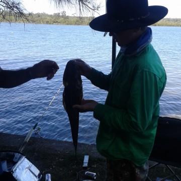 unpowered-site-fishing-nambucca