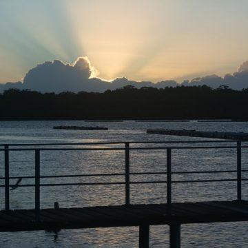 nambucca river pelican caravan park